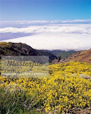 Landscape near Roque de los Muchachos, Parque Nacional de la Caldera de Taburiente, La Palma, Canary Islands, Spain, Europe