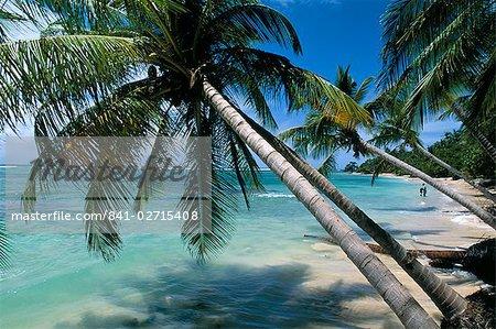 Beach, Capesterre region, Ile de Marie-Galante, French Antilles, West Indies, Central America