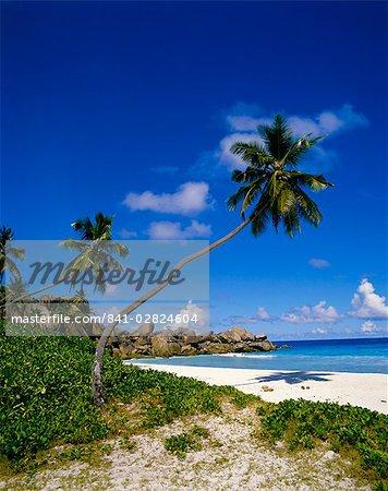 Beach, Grand Anse, La Digue Island, Seychelles