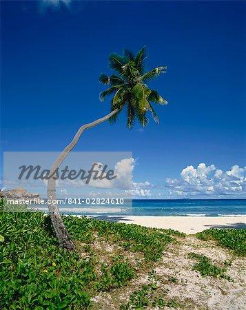 Grand Anse, La Digue, Seychelles, Indian Ocean, Africa