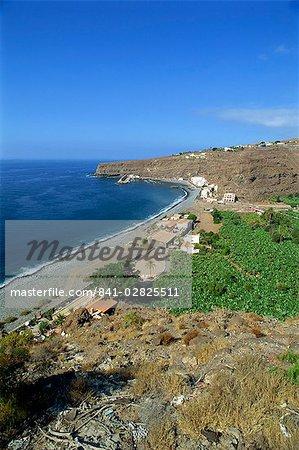 Banana plantations, Santiago, La Gomera, Canary Islands, Spain, Atlantic Ocean, Europe