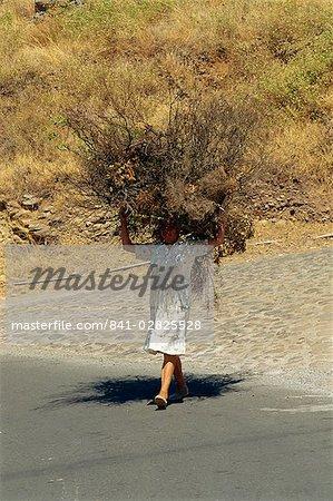 Woman carrying large brushwood bundle on her head, near Las Hayas, La Gomera, Canary Islands, Spain, Atlantic, Europe