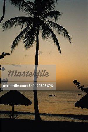Turtle Beach, Tobago, West Indies, Caribbean, Central America