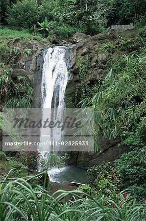 Concord waterfall, Grenada, Windward Islands, West Indies, Caribbean, Central America