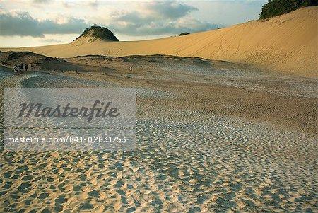 Great Sandy National Park, Fraser Island, UNESCO World Heritage Site, Queensland, Australia, Pacific