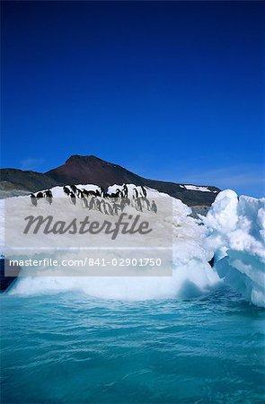 Iceberg and Adelie penguins, Antarctica, Polar Regions