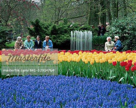 Tulips, Keukenhof, Holland, Europe