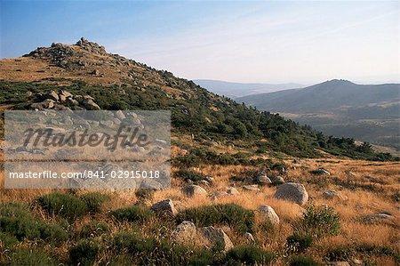 Mont Lozere, near Finiels, Cevennes National Park, Lozere, Languedoc-Roussillon, France, Europe