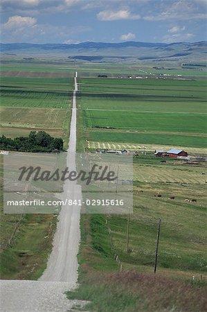 Road across prairie wheatlands, south of Calgary, Alberta, Canada, North America
