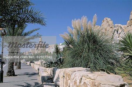The Medina, Yasmine Hammamet, Tunisia, North Africa, Africa
