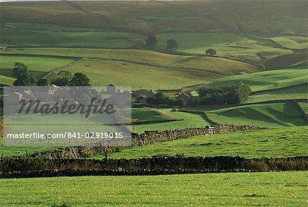 Moors at Ingleborough, North Yorkshire, Yorkshire, England, United Kingdom, Europe