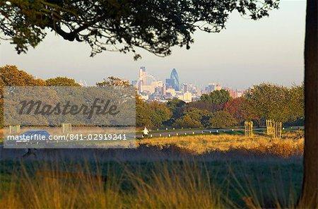 London skyline from Richmond Park, London, England, United Kingdom, Europe