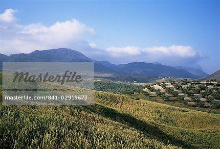 Sierra de Tejeda, Andalucia, Spain, Europe