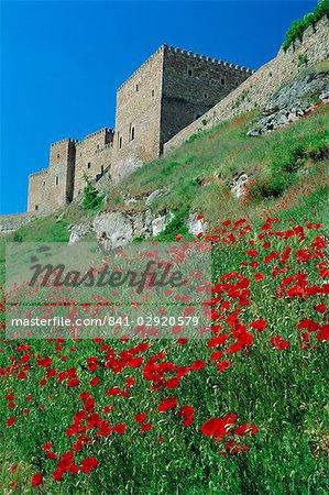 Poppies on hillside beneath the castle (now a Parador), Siguenza, Guadalajara, Castilla la Mancha, Spain, Europe