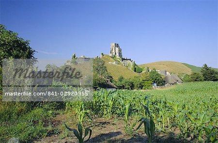 View across fields to Corfe Castle, Dorset, England, United Kingdom, Europe