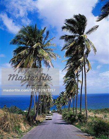East coast near Bathsheba, Barbados, West Indies, Caribbean, Central America