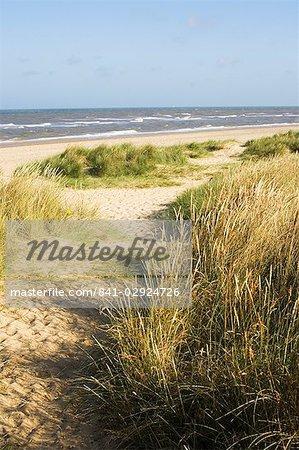 Beach, Southwold, Suffolk, England, United Kingdom, Europe
