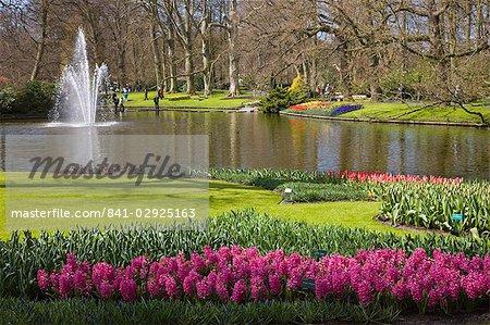 Keukenhof, park and gardens near Amsterdam, Netherlands, Europe