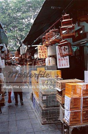 Bird market, Yuen Po Street Bird Garden, Mong Kok, Kowloon, Hong Kong, China, Asia