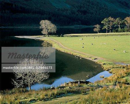 Footpath, Buttermere, Lake District National Park, Cumbria, England, United Kingdom, Europe