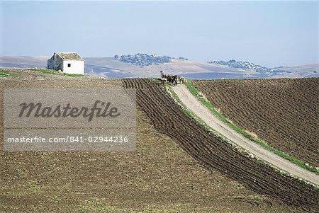 Pruna, Cordoba, Andalucia, Spain, Europe