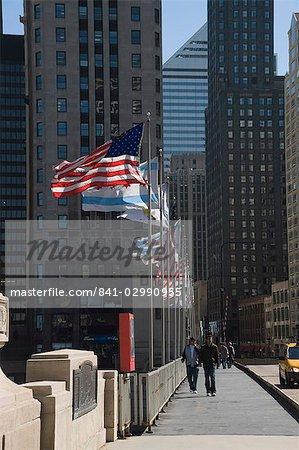 Flags, Chicago, Illinois, United States of America, North America