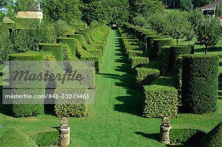 allee des charmes les jardins deyrignac dordogne perigord aquitaine - Jardin D Eyrignac