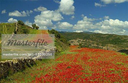 Landscape near Teruel, Maestrazgo, Aragon, Spain, Europe