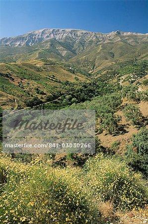 Landscape near Competa, Malaga, Andalucia, Spain, Europe