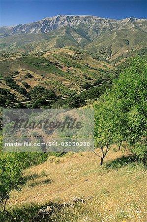 Landscape near Frigliana, Malaga, Andalucia, Spain, Europe