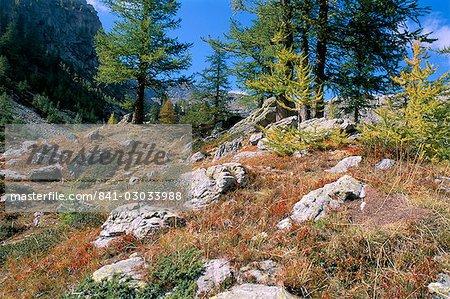 Vallee de Fontanalba, Pays des Merveilles, Mercantour National Park, Alpes Maritimes, Provence, France, Europe