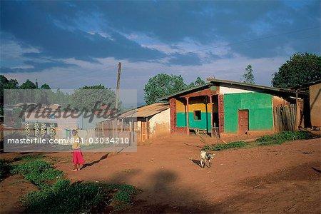 Village scene,Goulisoo,Oromo country,Welega state,Ethiopia,Africa