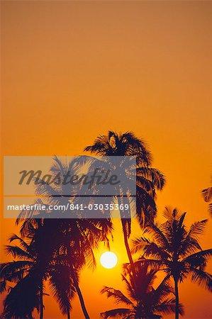 Sunset,Barbados