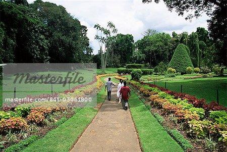 Peradeniya Botanical Gardens, Kandy, Sri Lanka, Asia