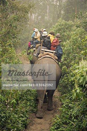 Japanese tourists on dawn elephant safari, at the Island Jungle Resort hotel, Royal Chitwan National Park, Terai, Nepal, Asia