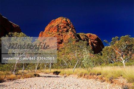 Bungle Bungle, Purnululu National Park, UNESCO World Heritage Site, Kimberley, Western Australia, Australia, Pacific