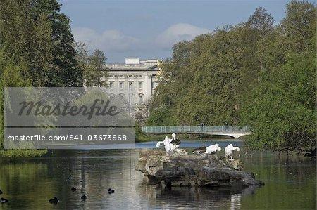 St. James's Park lake from Pelican Rock to Buckingham Palace, London, England, United Kingdom, Europe