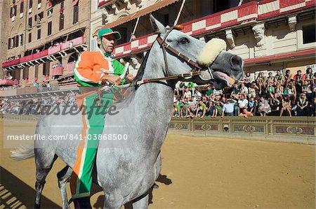 Rider at El Palio horse race festival, Piazza del Campo, Siena, Tuscany, Italy, Europe