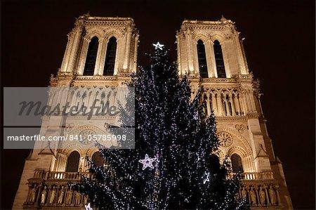 Christmas tree outside Notre-Dame de Paris cathedral, Paris, France, Europe
