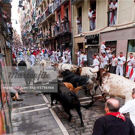 Eighth and last Encierro (running of the bulls), San Fermin festival, Pamplona, Navarra (Navarre), Spain, Europe