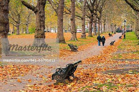 Green Park in autumn, London, England, United Kingdom, Europe