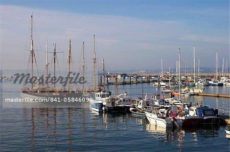 Marina, Brixham, Devon, England, United Kingdom, Europe