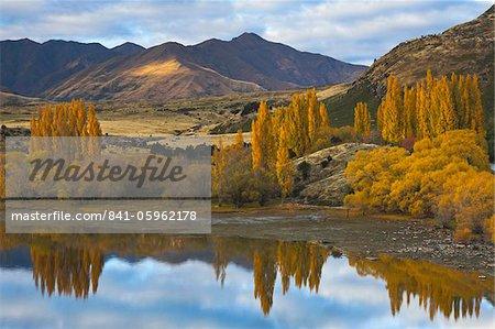 Glorious autumn colour beside the lake at Wanaka, Otago, South Island, New Zealand, Pacific