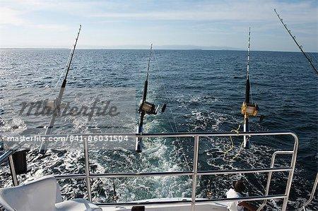 Deep-sea sports-fishing, Puerto Vallarta, Jalisco, Mexico, North America