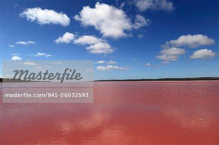 Edible algae provides a pink hue to the Hutt Pink Lagoon, Port Gregory, Western Australia, Australia, Pacific