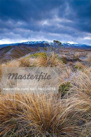 Tongariro National Park, UNESCO World Heritage Site, North Island, New Zealand, Pacific