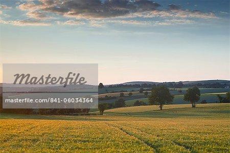 Bue, Sancerre, Cher, Loire Valley, Centre, France, Europe