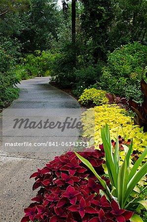 Harry P. Leu Gardens, Orlando, Florida, United States of America, North America