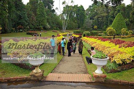 Visitors in the Royal Botanical Garden, Peradeniya, Kandy, Sri Lanka, Asia