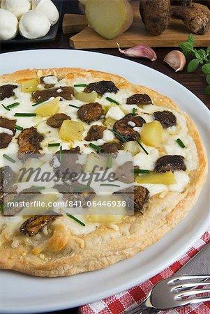 Ceps or Porcini Mushroom pizza (Boletus edulis), Italy, Europe